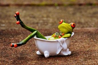 frog bath